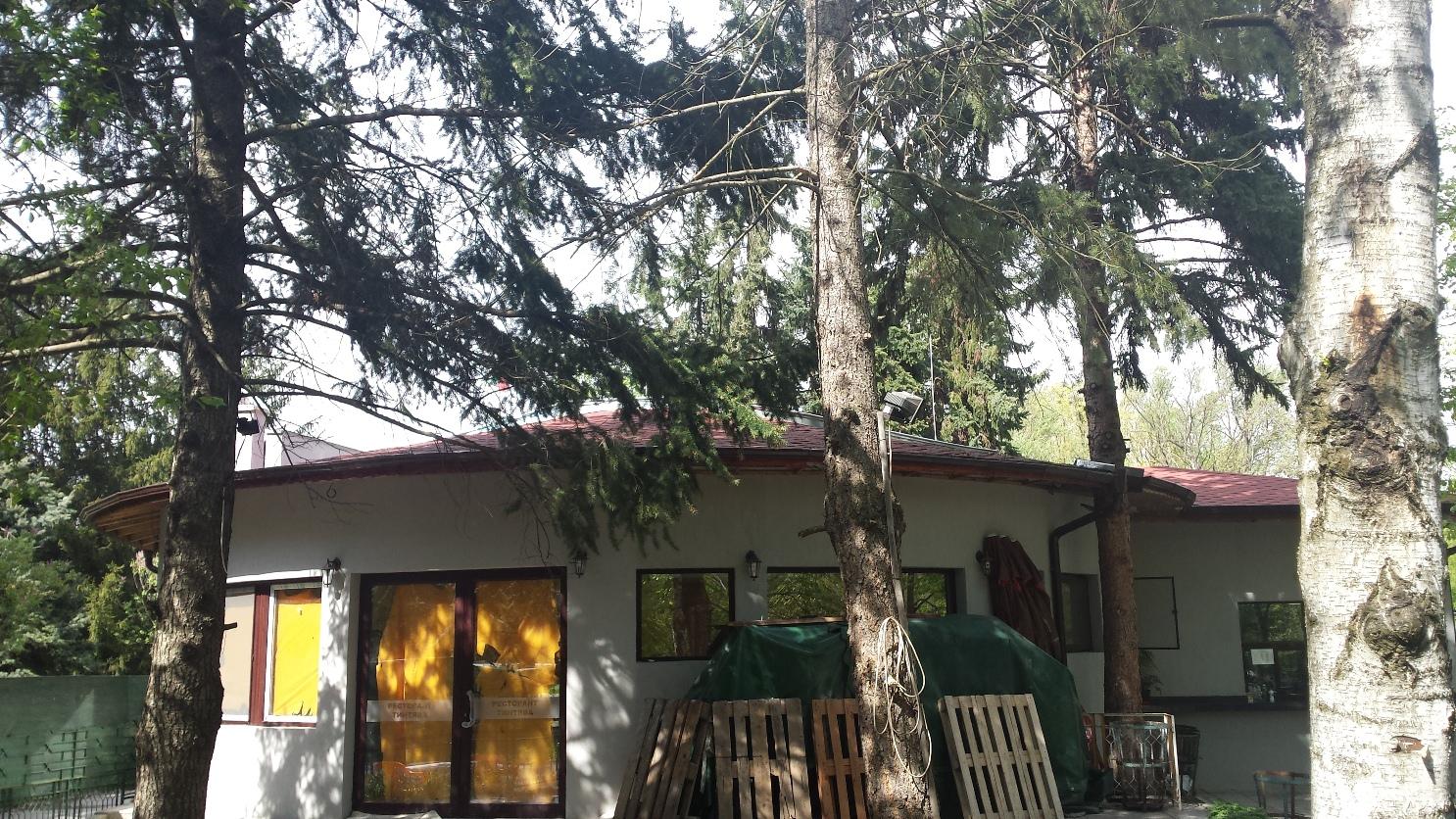Фасада и извит покрив, Ресторант Тинтява